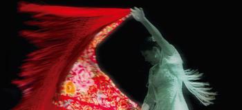 Cartel baile con mantón Congreso Universitario Investigacion Flamenco