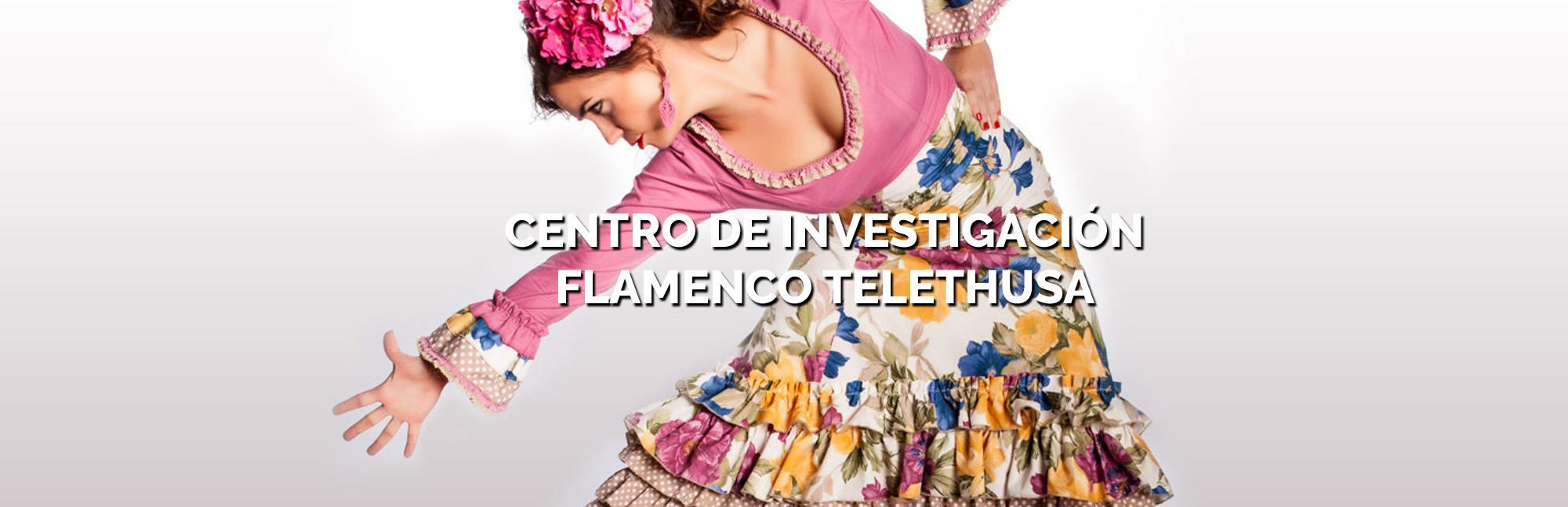 CENTRO INVESTIGACION FLAMENCO TELETHUSA
